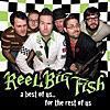 本日のおすすめの一曲【82】Take On Me/REEL BIG FISH