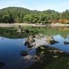 【平泉】毛越寺① - 浄土庭園は夢かと思うくらい美しかった