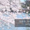 吉祥寺、井の頭公園で桜を撮ってきた。駅正面の丸井の横の道は混んでるから、ぐるっとまわって横から入るのがお勧め。