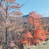 11月中旬に差し掛かった榛名山の紅葉。