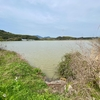 内潟ダブ池(熊本県戸馳島)