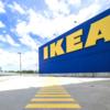 IKEAがビーガンフード/なぜ海外では企業もビーガンに熱心なのか?