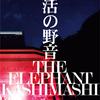 「復活の野音」日比谷野音二日目ノーカットVer.が12月18日DVD発売!