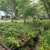 【キャンプ場】温泉があるキャンプ場:手ぶらOK!休暇村嬬恋鹿沢(群馬)