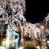 京都・祇園から歩いて行ける!オススメのライトアップスポット5選(夜間拝観してみませんか?)