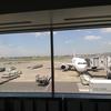 羽田空港で回復