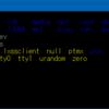 Bash on Ubuntu on Windows (WSL)のシェル配色テーマ変更