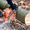ちょっと待って!!DIYの木材カットは「コメリ」でやってもらおう。