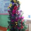 キルギスのクリスマスとお正月(結局どっちかわからん。。笑)