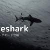 Wiresharkにダークモードがやってきた[Version3.2 新機能]