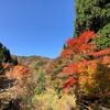 紅葉の山中湖&太平山プチ縦走