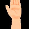 【論文考察】水泳競技における筋活動解析② ~クロール泳時の全身筋活動:尺側手根屈筋、広背筋~
