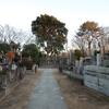 力道山のお墓近くにある虎の像、、、