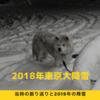 去年の東京の大雪模様振り返り