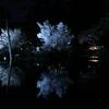 夜桜でホワイトバランスの赤みと青みを試してみた