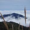 丹沢塔ノ岳~雲海を見た