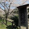桜の名所石川町「母衣旗観音」を見に行ってきた!