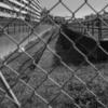 東京都港湾局専用線深川線跡 一部線路が残されています