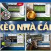 Tỷ lệ kèo nhà cái - Nhận định soi kèo bóng đá trực tuyến