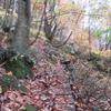 ◆10/29        獅子ヶ鼻湿原④…新山溶岩流末端崖