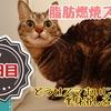 【レポ】脂肪燃焼スープダイエット・2日目/スープと野菜の日