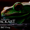 【ZENAQ】20kgの破断強度を誇るライトフロッグロッド「Spirado BLACKART B67 Frog」登場!通販リンク有!