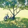 回顧録 no.55  「‥夢の風景 ~乗れない自転車   1/2   」