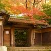 一生に一度は見たい京都「瑠璃光院」の紅葉、2016年も開催らしいよ!!