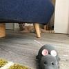 ネズミvs猫