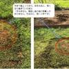芝刈時にハゲてしまう、芝が凸な場所の対処法
