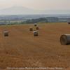 麦わらロールのある風景
