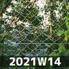 週報 2021W14