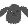 【ブログの顔】当ブログのタイトル画像を作ってもらいました