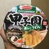 エースコック 阪神甲子園球場監修 甲子園カレーうどん 食べてみました