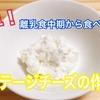 【離乳食レシピ】簡単!すぐできるカッテージチーズの作り方!【離乳食中期】【なかた村の離乳食】