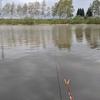 滝川市、池の前水上公園、ヘラブナ乗っ込みもう少しかな?(2021池の前水上公園2)
