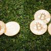 一般大学生による仮想通貨への見解