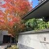 2019年マリオットプラチナ&チタン修行71泊目 ~ 紅葉シーズンの 京都リッツカールトンに宿泊してきました。お部屋紹介 ~