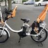 【自転車の話】 ワタクシの自転車の記録⑤