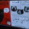 猫のリチャード三世