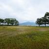むかし古墓がたくさんあった公園 -岬ノ山公園- 福岡県北九州市若松区古前