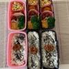 台風19号に備える 〜今日のお弁当〜今日のわんこ〜