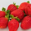 イチゴ いちご 苺🍓