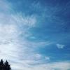 【連載】続・晴雨計 第12回 「DREAM IS ALIVE」