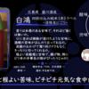 【水曜日の甘口一杯】白鴻 四段仕込み純米《赤》ラベル‐活性生にごり‐【FUKA🍶YO-I】