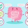 整腸剤や菌活に宮入菌をオススメする理由