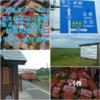 「和商市場」は「函館の朝市」「札幌の二条市場」と共に <北海道三大市場>の一つ