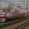 2月13日撮影 東海道線 平塚~大磯間 貨物列車4本撮影 1155ㇾ 5075ㇾ 3075ㇾ 2079ㇾ