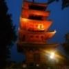 [*[好きな音楽] ]SLOW LIVE in 池上本門寺に行ってきた!