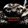 CRZKNY別名義DJ ANACONDA『ANACONDA TRAX vol.1』はゲットーハウスという概念を空想させるアルバムな件